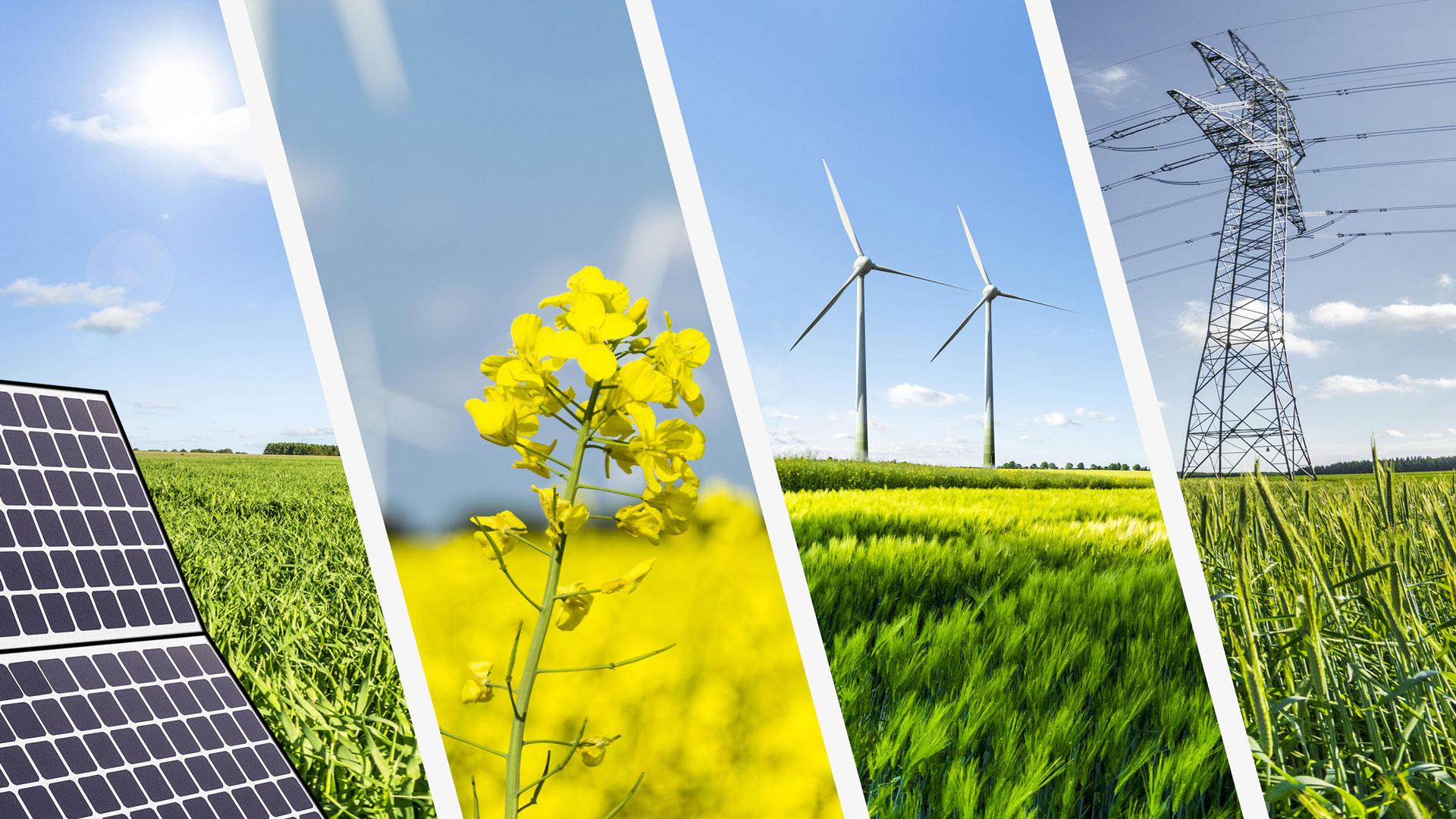 Ci occupiamo di progettazione, realizzazione e assistenza per impianti di produzione di energia da fonti rinnovabili